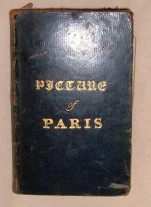 picture of paris book cover